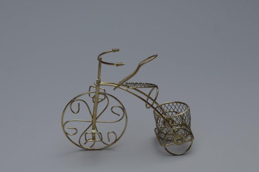 Marturie Bicicleta Aurie